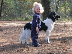 Great family dog: picture by Susan Perdok